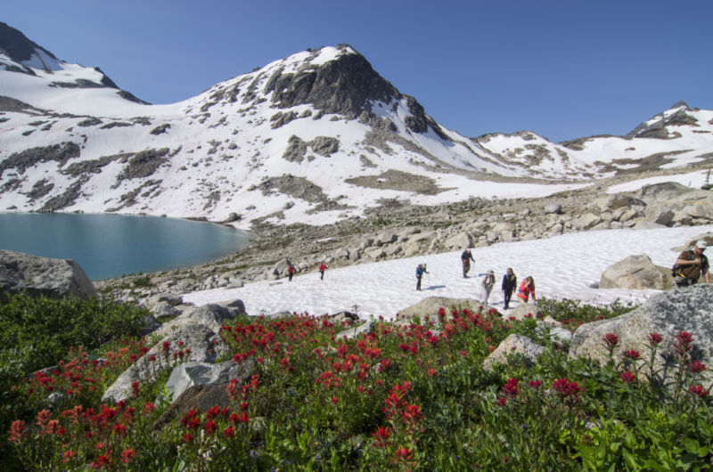 hikers-crossing-a-snowpatch-bugaboos-lyle-grisedale-1024x678